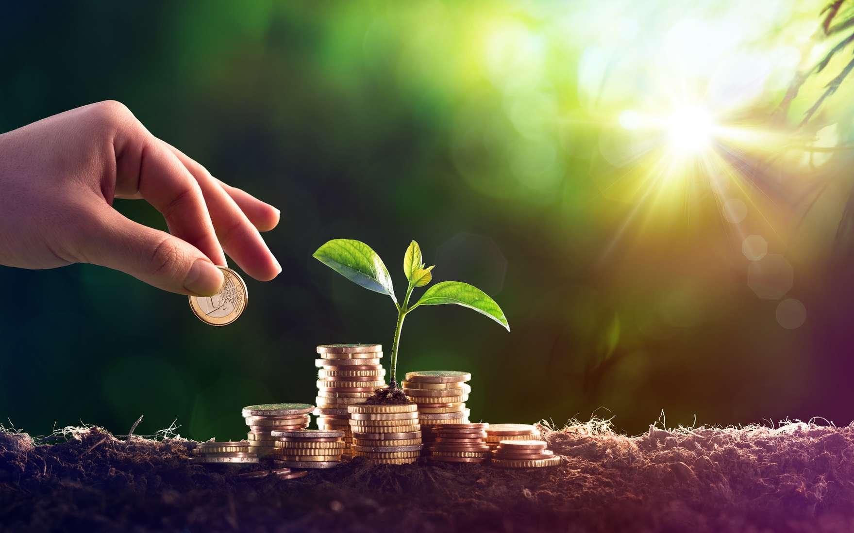 Investissement responsable écologique